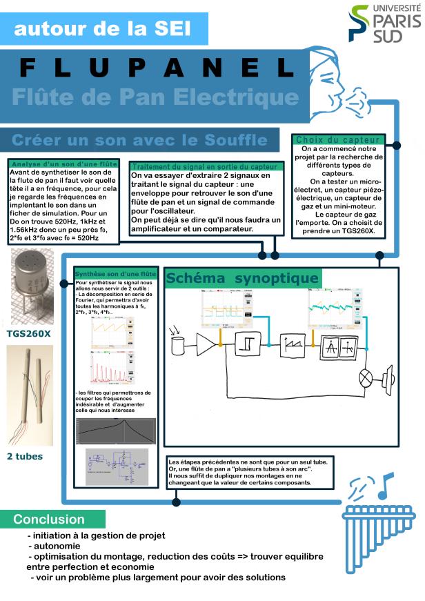 final_fiche_flup.png